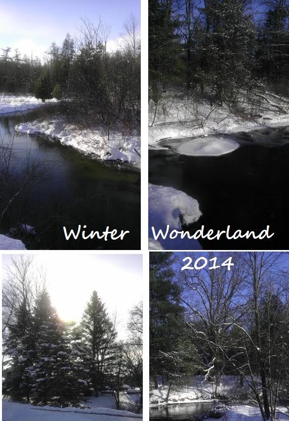 Winterwonderland 2014